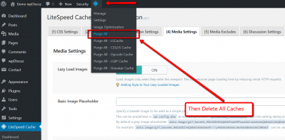 wpDiscuz LiteSpeed Cache Conflict Delete All Caches Step2